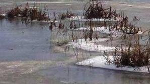APARIŢIE SPECTACULOASĂ pe Râul Bega, în Timiş