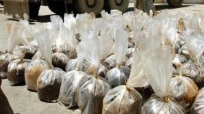 Captură uriaşă de heroină, la Timişoara. Valoarea, un sfert de milion de euro