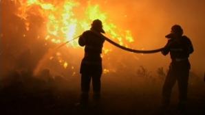 A vrut să scape de păduchi şi şi-a dat foc la casă. Tragedia prin care trece un bătrân din Neamţ