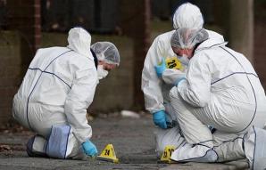 Crima care a îngrozit Banatul! Ce s-a întâmplat cu cadavrul fără cap, mâini şi picioare