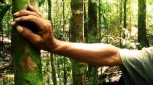 Activişti de mediu, bătuţi în Retezat. Procurorii au început urmărirea penală