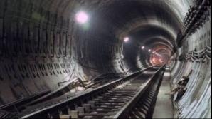 """Lucrările la metrou au scos la suprafață """"fauna"""" subterană: Drumul Taberei, un rai pentru şobolani"""
