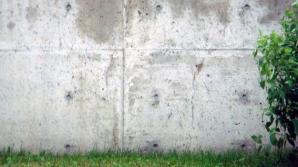 Mesajul de pe un zid din Portul Tomis, viral pe internet / Foto: Arhiva