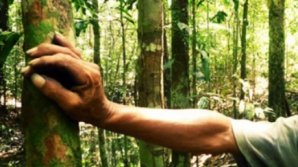O tânără de 19 ani, angajată la Cabana Omu, dispărută fără urmă. Autorităţile, în alertă