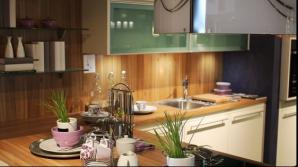 Cum scăpaţi cel mai sigur de gândacii de bucătărie