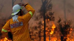 Incendii de vegetaţie la Cernobîl / Foto: Arhiva