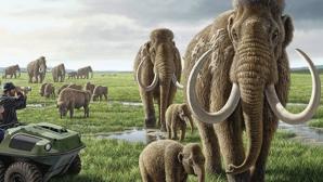 Mamutul armenesc - cel mai mare mamifer terestru din istorie!