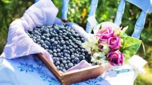 5 motive să mănânci zilnic afine