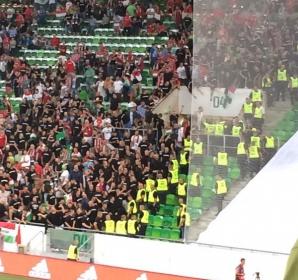 Suporterii maghiari