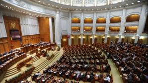 Parlamentarii liberali, în grevă japoneză