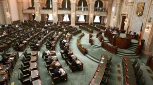 Schimbări majore în PSD și UDMR. Cine sunt noii lideri