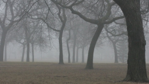 Cod galben de ceata. Vizibilitatea, extrem de scazuta