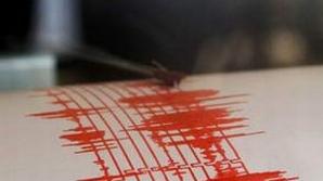 Cutremur în Buzău. Câte grade a avut
