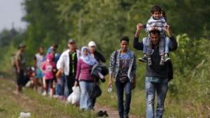 Criza refugiaţilor. Guvernul român acordă un ajutor umanitar pentru Serbia