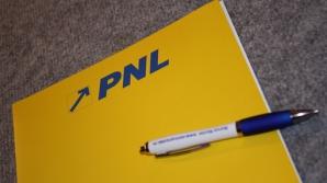 PNL votează pentru arestări. Ce spune Alina Gorghiu despre Ioan Oltean