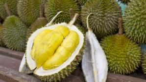 Fructul regilor. Durianul are proprietăţi miraculoase, însă unii oameni refuză să-l mănânce. De ce?