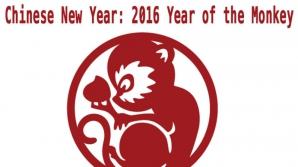 Horoscop chinezesc 2016. Intrăm în anul Maimuţei de Foc. Află cum vei sta cu dragostea în acest an