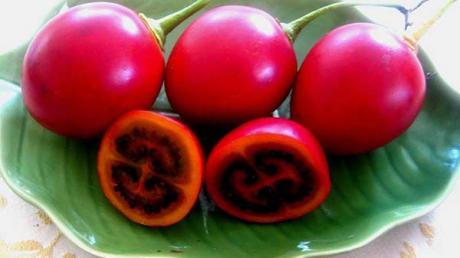 tamarillo-fructul-exotic-mai-pui