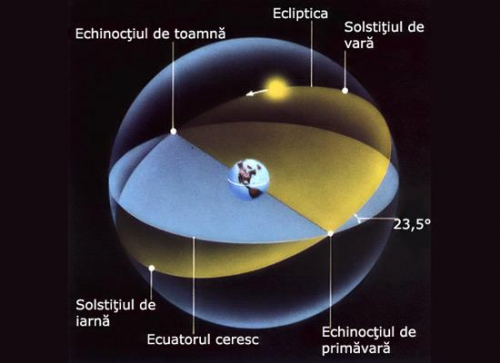 (w500) <p>Echinoc