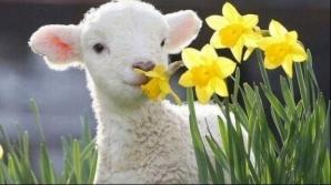 Cum va fi vremea în noaptea de Înviere și în ziua de Paște