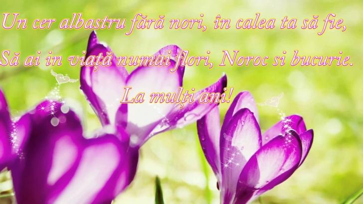 (w728) <p>Felicit