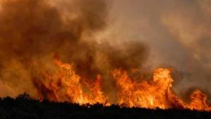 Incendiu devastator, în Canada. Pompierii nu-l pot stinge, aşteaptă să plouă!