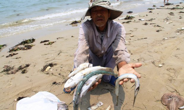 Fenomen inexplicabil Vietnam