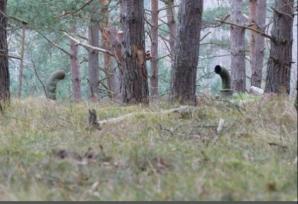 Au văzut nişte conducte în pădure. Au intrat în ele şi au rămas şocaţi când au văzut unde au ajuns