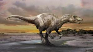 O specie necunoscută de dinozaur carnivor a fost descoperită în Argentina