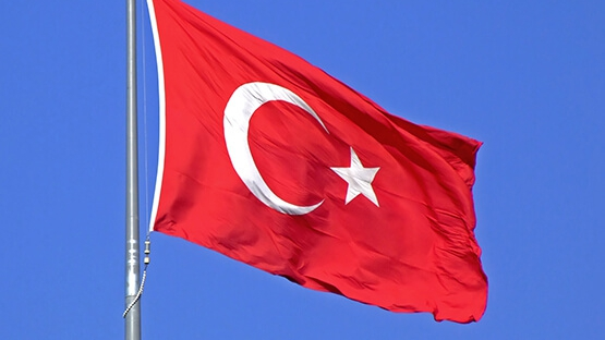 Ankara este pregătită să coopereze cu Consiliul Europei în ancheta privind lovitura de stat