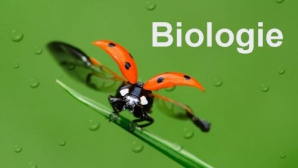 Subiecte BIOLOGIE BAC 2016 sesiunea august.
