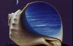 Scoicile si sunetul mării