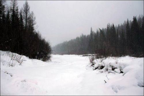 padure in Siberia