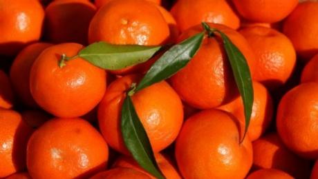 De ce se vând clementinele cu tot cu frunze. S-a aflat secretul comercianţilor!