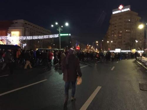 (w500) <p>Protest