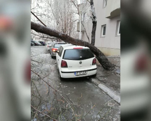 Record of disaster after frost: 1800 interventions in Bucharest and