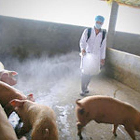 Foto: cnbc.com