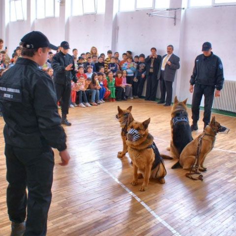 Foto: dpcs1.ro