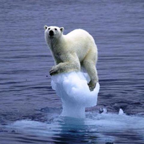 Foto: ecozine.co.uk