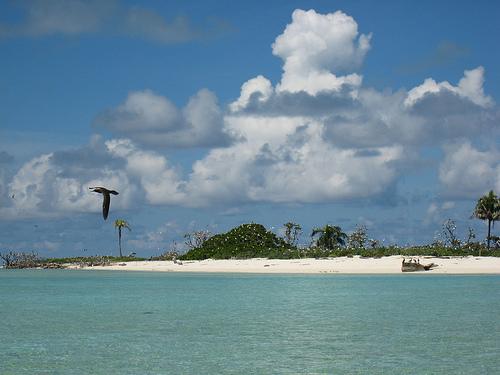 Foto: IUCN