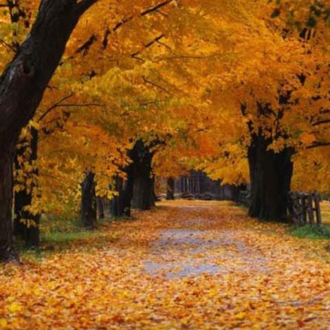 Foto: rostonline.org