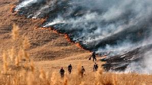 Incendiu de vegetaţie