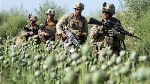droguri Afganistan