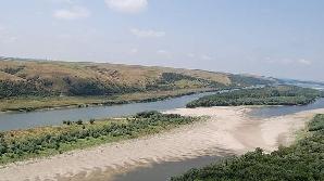 """Ostroavele, sau insulele de pe Dunăre, sunt adevărate """"jungle"""" în care îşi găsesc refugiul specii rare. Foto: WWF"""