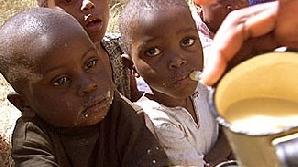 4.700 de cazuri de holeră numai în noiembrie