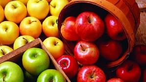 Comisia Europeană îndeamnă copiii să consume fructe