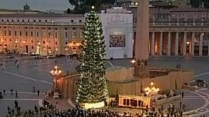 Bradul de Crăciun de la Vatican