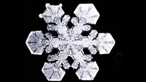 Imagine la microscop a unui fulg de nea