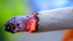 Valoarea de vamă a ţigărilor confiscate se apropie de 40.000 de euro.