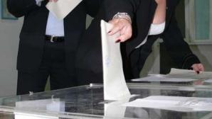 Cele trei firme au furnizat echipamentele IT necesare centralizării voturilor la alegerile locale